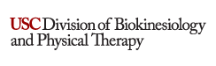 Division of Biokinesiology and Physical Therapy